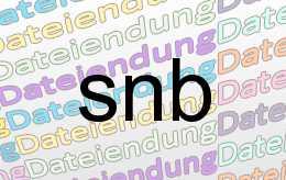 snb Datei